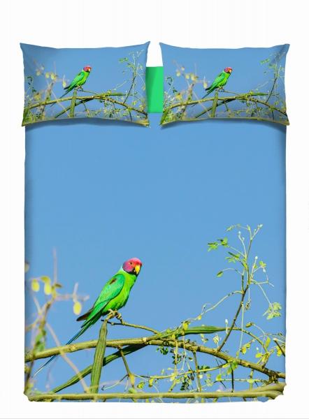 vs-2593-parrot