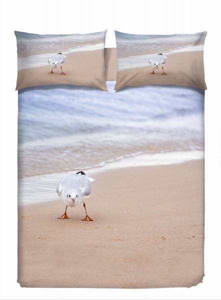 vs-2592-seagull